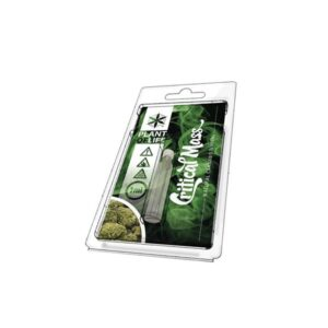 Cannabis Terpene 1ml – Critical Mass