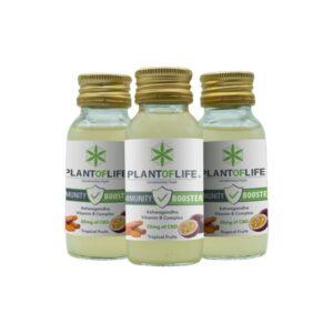 24 x Plant Of Life 25mg CBD Immunity Booster 60ml