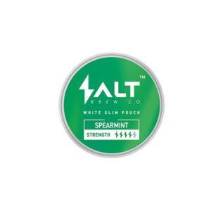 Salt Brew Co 16mg Spearmint Nicotine Snus Pouches 20 Pouches